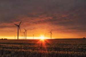 Bild von Windrädern auf einem Feld
